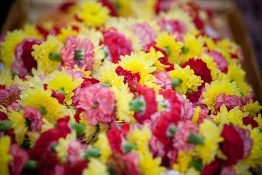 Chrysanthemum and Carnation make up the Garlands for an Indian Wedding in Kendal.